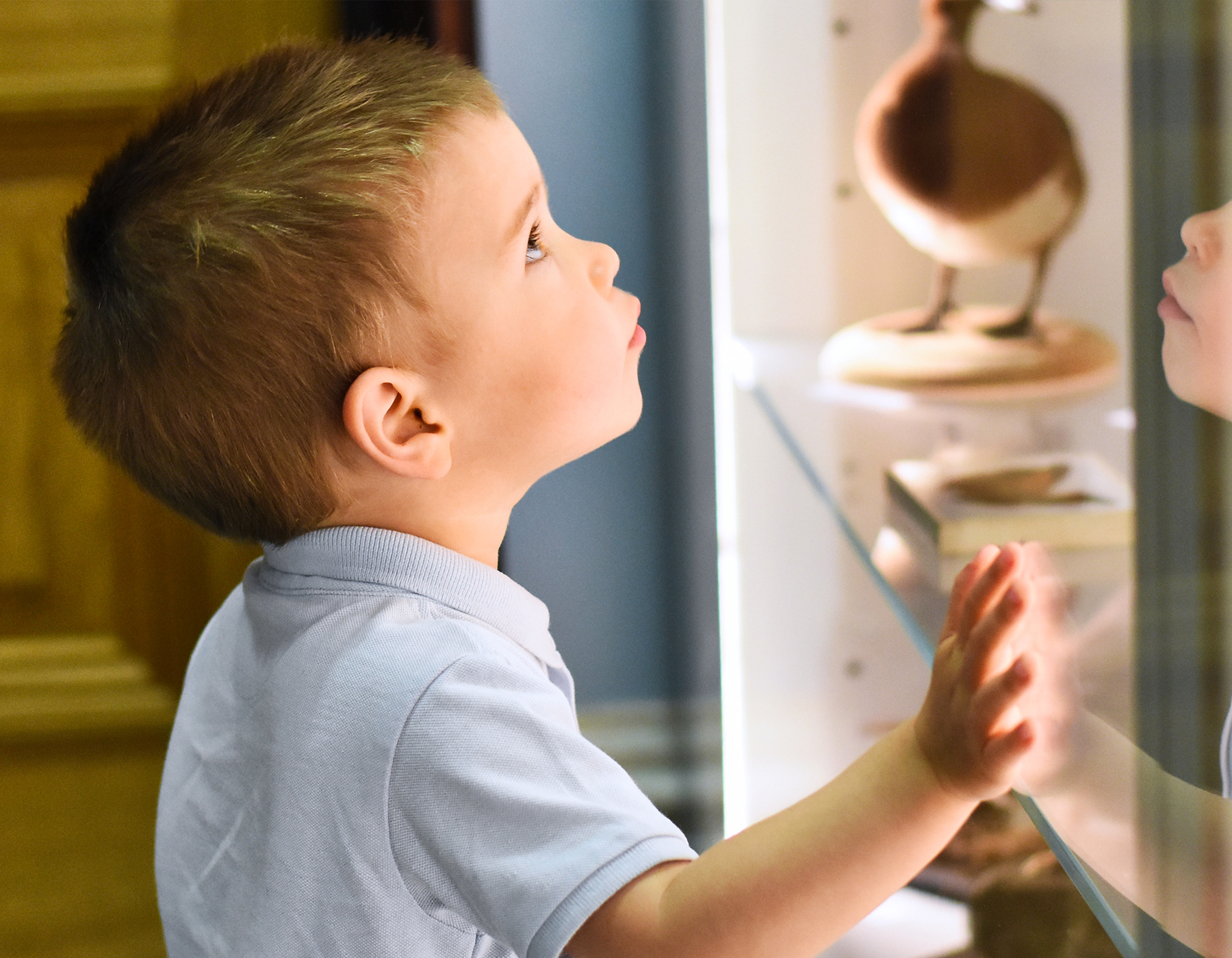 Young child looking at museum display cabinet