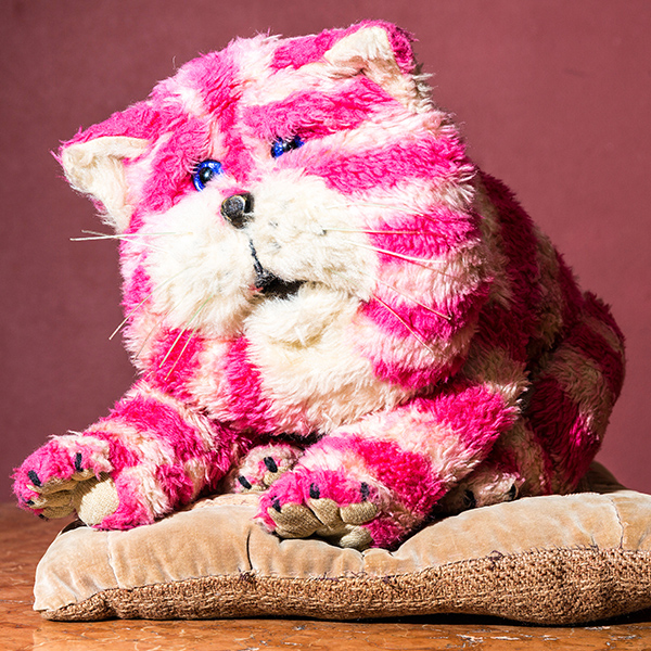Bagpuss the pink and white cat sat on a cushion.