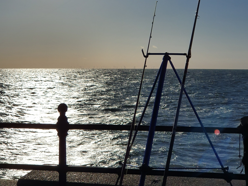 View of the sea with fishing lines in the foreground