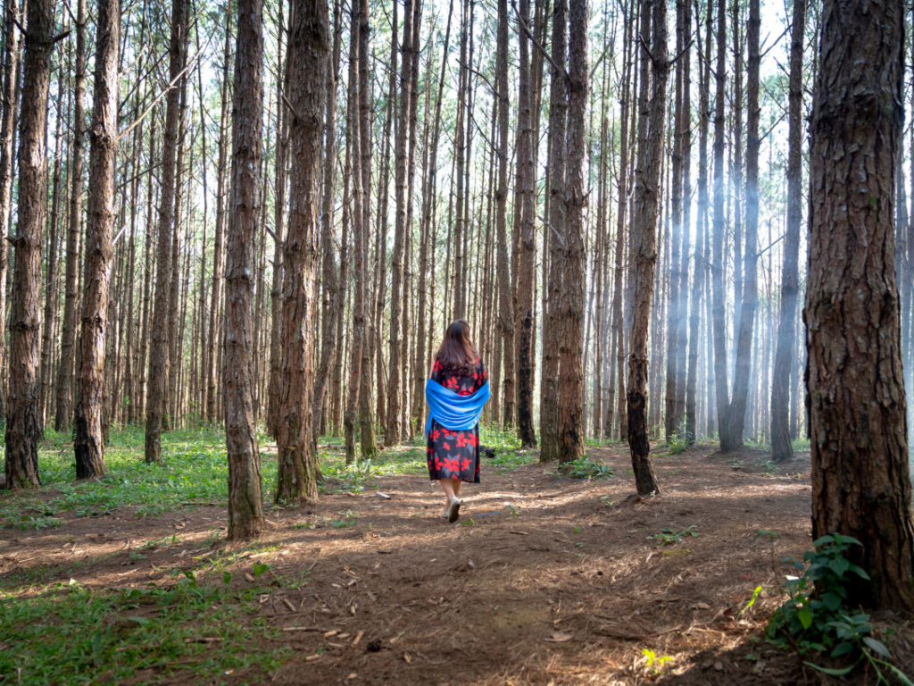 Woman walking through the woods with her back to the camera