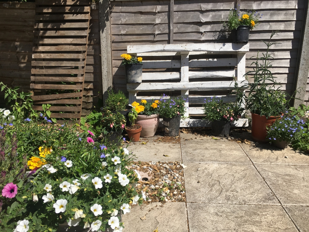 Garden patio with flowers and plant pots against a wooden fence