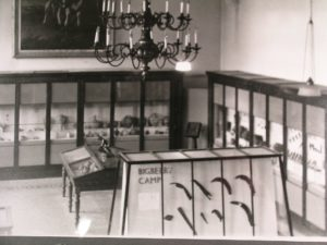 The collections inside The Beaney in the 1950's