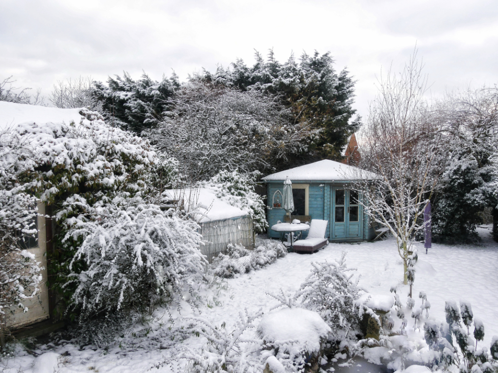 Snow-covered garden