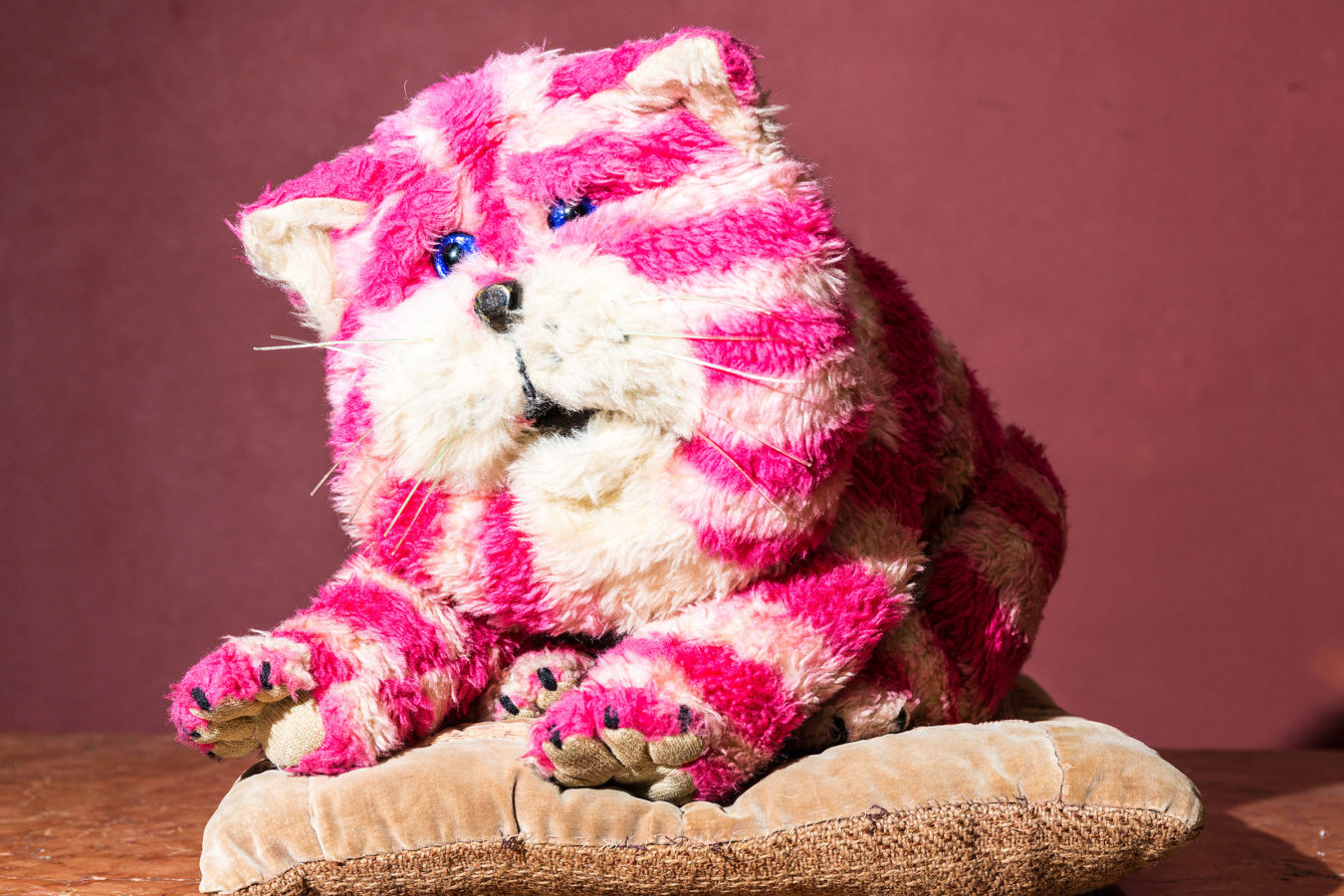 Bagpuss the pink and white cat sitting on a cushion.