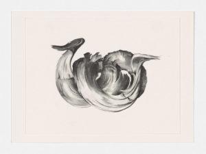 Georgia O'Keeffe: Memories of Drawings